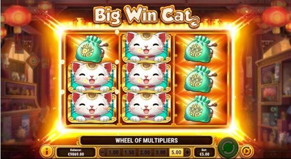 slot Big Win Cat